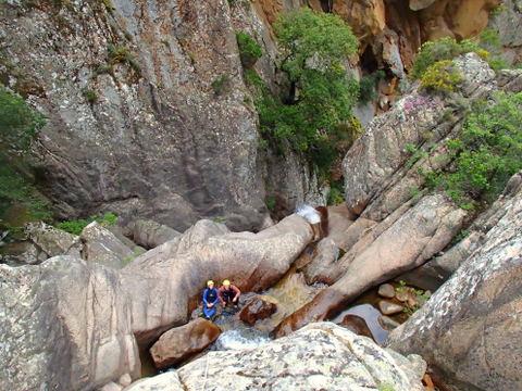 Canyon le Dardo sportif technique
